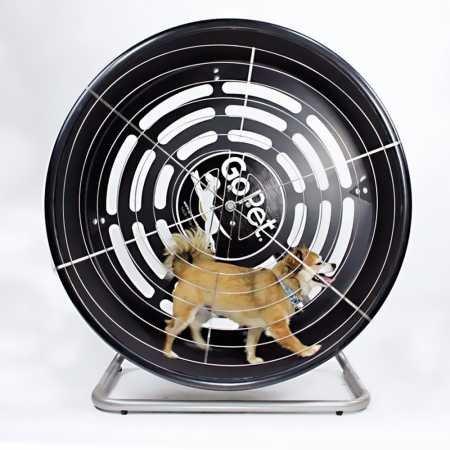 GoPet Treadwheel ToySmall (<25lbs) by GoPet