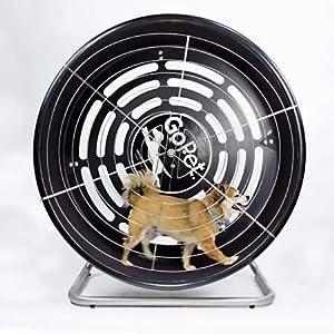 GoPet Treadwheel Toy Small (<25lbs)
