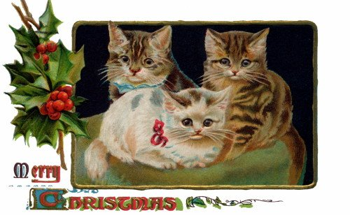 Victorian Christmas Image~Three Kitty Cats on a Pillow~Holly~6 pack NEW Matte Vintage Picture Large Blank Note Cards with Envelopes