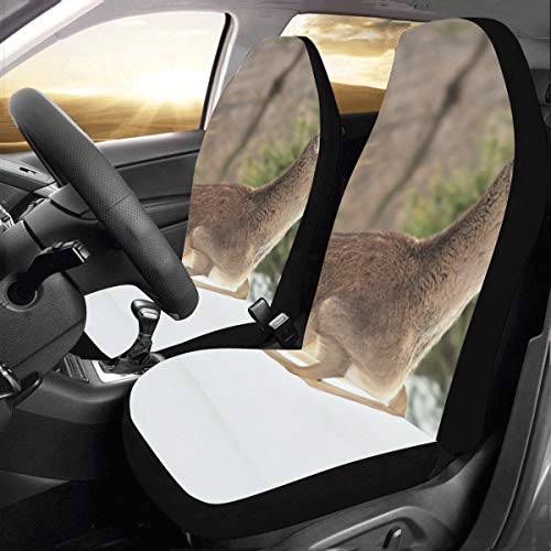 (Jumping Happy Fun Deer Custom New Universal Fit Auto Drive Car Seat Covers Protector for Women Automobile Jeep Truck SUV Vehicle Full Set Accessories for Adult Baby (Set of 2 Front))