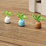 Miniature 1:12 3PCS Simulation Green Plants Aquarius Decoration Toy For Office/Home/Car DIY Dollhouse Accessories ZevenMart