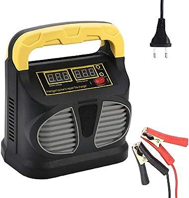 Charger-EJOYDUTY Cargador/Mantenedor de batería automotriz de ...
