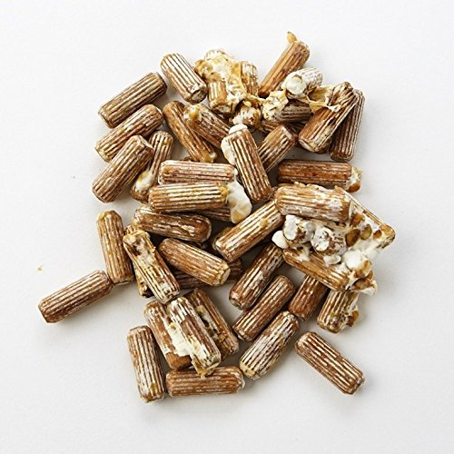 Shiitake Plug Spawn 100 count - Shiitake Dowel Spawn - Grow your own Edible Gourmet Mushrooms