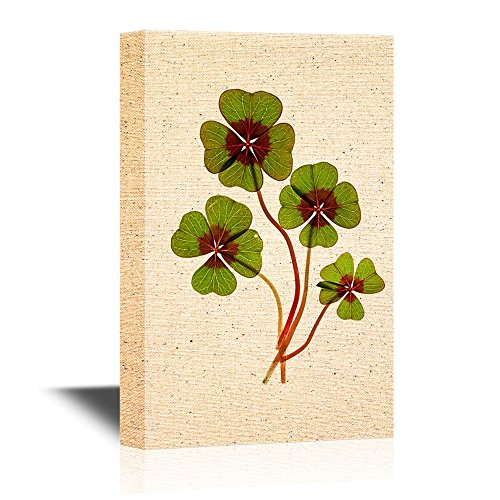 Four Leaf Lucky Clover Leaves