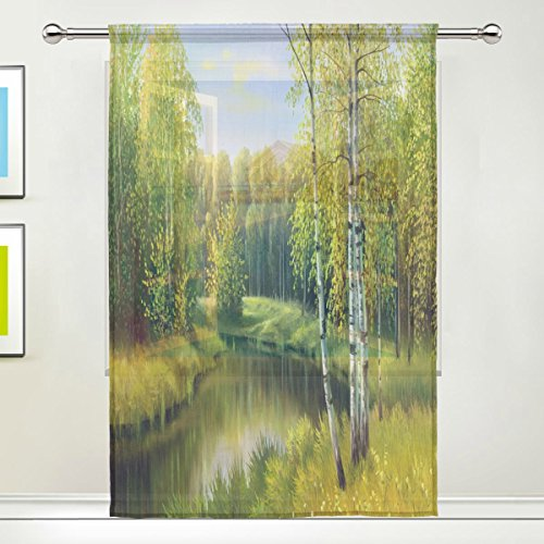 River Nursery Birch - Autumn Landscape Scene River Birch Trees Sheer Curtain for Living Dining Room Bedroom 55 x 84 Inches Long Green Window Treatments Rod Pocket Polyester Fabric