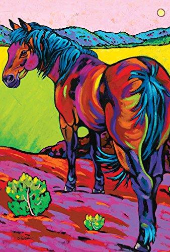 Toland Home Garden Pop Art Horse 28 x 40 Inch Decorative Colorful Southwest Desert Farm House Flag