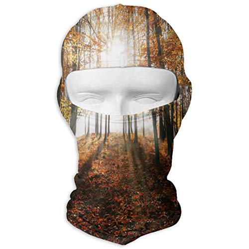 Balaclava Autumn Maple Forest Full Face Masks UV Protection for sale  Delivered anywhere in USA