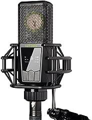 Lewitt LCT 540 Subzero - Micrófono Condensador de diafragma Grande