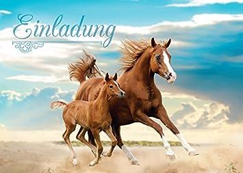 12 Einladungskarten Zum Kindergeburtstag Pferd / Fohlen / Zwei Pferde /  Schöne Und Bunte Einladungen Für