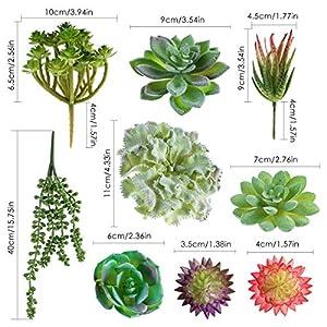 SOONHUA Artificial Succulent Plants, Fake Succulent Plants,Assorted Faux Plant for Home Office Decoration Floral Arrangement,Unpotted for Christmas Decorations (15 Different PCS) 2