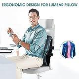 Lumbar Support Pillow,Memory Foam Back Support