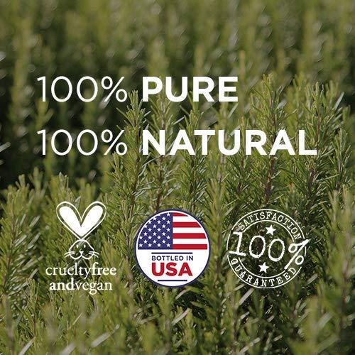 Radha Beauty Aromatherapy Top 8 Essential Oils 100% Pure & Therapeutic Grade – Sampler Gift Set & Kit (Lavender, Tea…