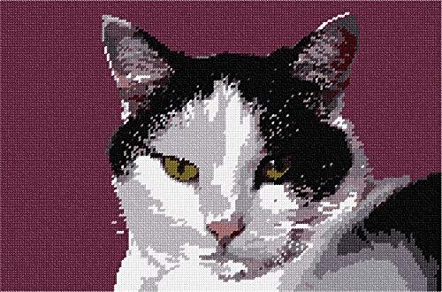 Here Kitty Needlepoint Kit