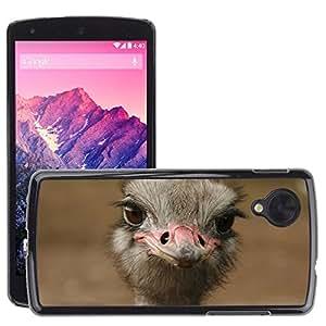 Hot Style Cell Phone PC Hard Case Cover // M00114857 Ostrich Bird Head Beak Neck // LG Nexus 5