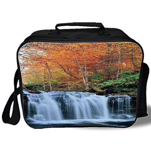 Waterfall 3D Print Insulated Lunch Bag,Waterfalls in Autumn Season Nature Park With Colorful Foliage Trees,for Work/School/Picnic,Orange Green Dark Brown (Barney Water Bottle)