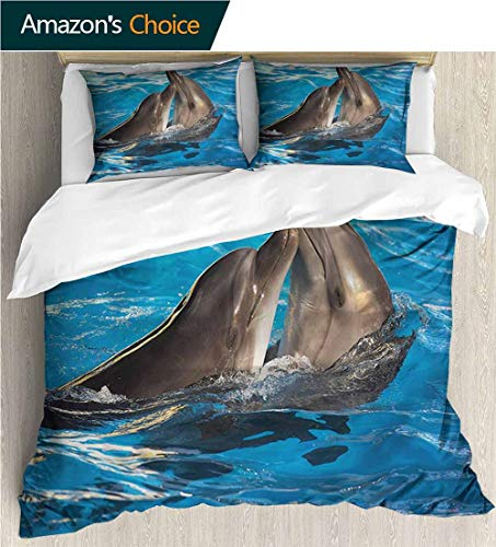VROSELV-HOME Bedspread Set Queen Size,Box Stitched,Soft,Breathable,Hypoallergenic,Fade Resistant Kids Bedding-Does Not Shrink Or Wrinkle-Dolphin Aqua Show Photography (87