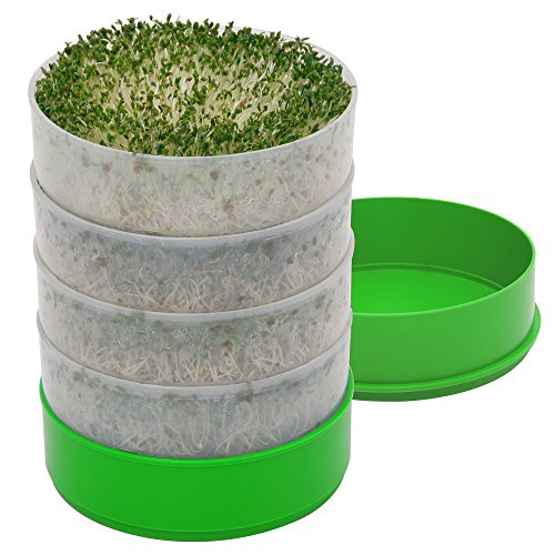 Grow Alfalfa Sprouts - Deluxe Kitchen Crop 4-Tray Seed Sprouter by VICTORIO VKP1200