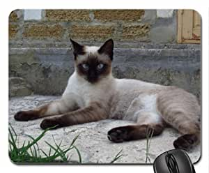 WMSHOP Resting cat Mouse Pad, Mousepad (Cats Mouse Pad)