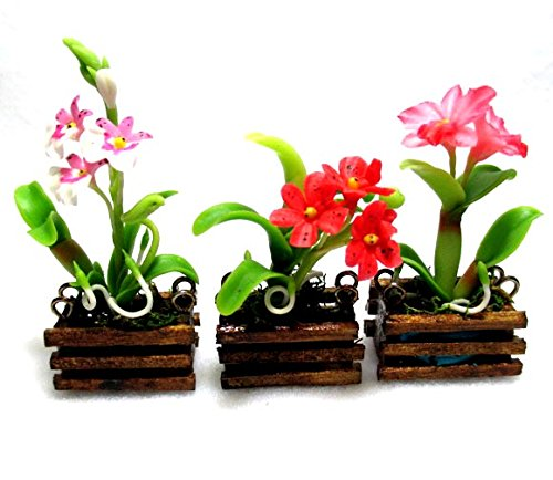 Artificial flowers Orchids made of clay in wooden pots Gift - For West Sale Melbourne