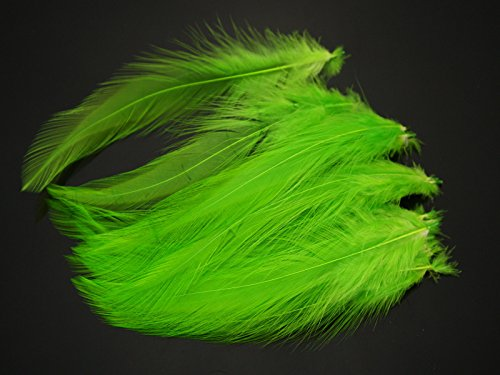 FidgetFidget Saltwater Neck Hackle Fly Tying Material Feathers Available In 12 Colors