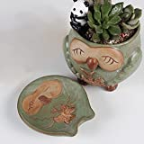 SweetLifeIdea Ceramic Garden Decor Planter Smiling Owl Shaped Flower Pot Cactus Succulents Plant Pot w/ Saucer Medium For Sale