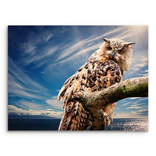 - Anna Homey Decor Framed Owl Animal Canvas Wall Art Abstract Modern Giclee Wall Artwork Paintings Sky Canvas Prints Wall Panels for Wall Bedroom Living Room Decor,12x16 Stretched Canvas Ready to Hang