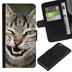 Stuss Case / Funda Carcasa PU de Cuero - Wink Cat American Shorthair Manx - Apple Iphone 6