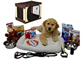 Open Road Goods Puppy Starter Kit Bundle Deluxe Edition with Travel Light Soft Crate