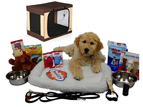 Puppy Starter Kit Bundle Deluxe Edition with Travel Light Soft Crate by Open Road Goods