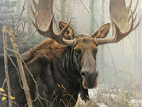 Cobble Hill Bull Moose by Artist Robert Bateman 500 Piece Jigsaw Puzzle]()