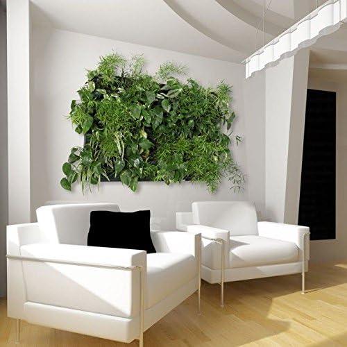 Wallnatura jardin vertical verde XL: Amazon.es: Hogar