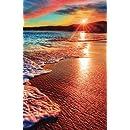 Internet Password Organizer: Sunset at the Beach (Discreet Password Journal)
