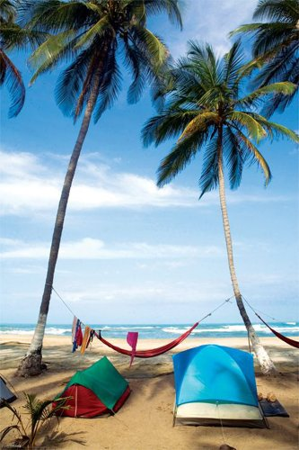 Life's a Beach Poster (24