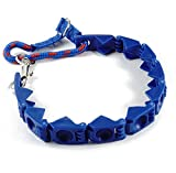Cheap XXL Size Perfect Dog Command Collar Training Pets Prong Choke Chain + DVD