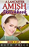 A Lancaster Amish Sketchbook - Book 3 (A Lancaster Amish Sketchbook Serial (Amish Faith Through Fire))