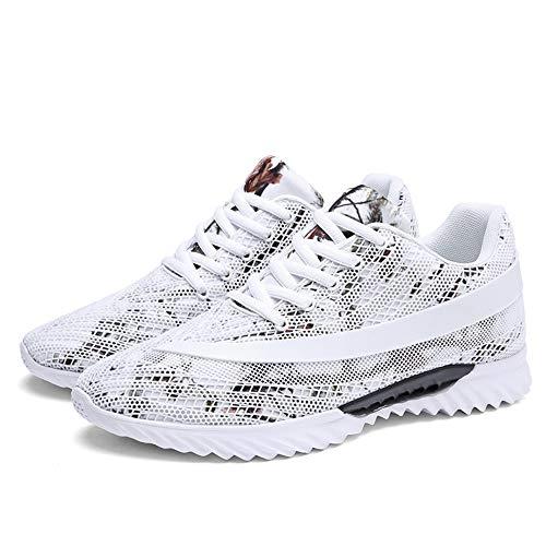 sportive In The Scarpe Shoe Leisure Shoe Net Joker bianco Maylen Fabric Of Shoes Hughes Fall a0g4qg