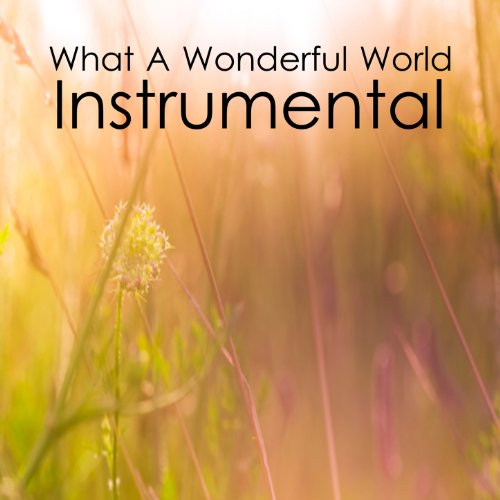 What A Wonderful World Instrumental Music Players Mp3 Downloads