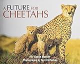A Future For Cheetahs