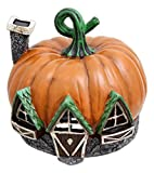 Fiddlehead Fairy Village Pumpkin House