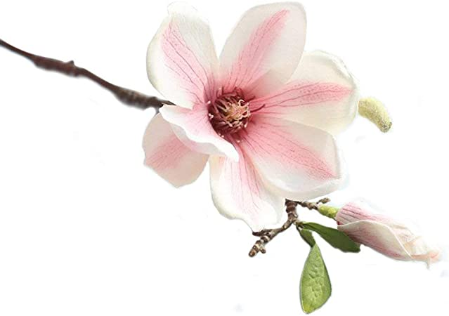 Superb Artificial Silk Flowers Magnolia Floral Real Touch Decorative Flower For Wedding Pink 6 Pcs Amazon Co Uk Kitchen Home