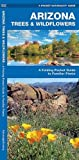 Arizona Trees & Wildflowers: A Folding Pocket Guide to Familiar Species (A Pocket Naturalist Guide)