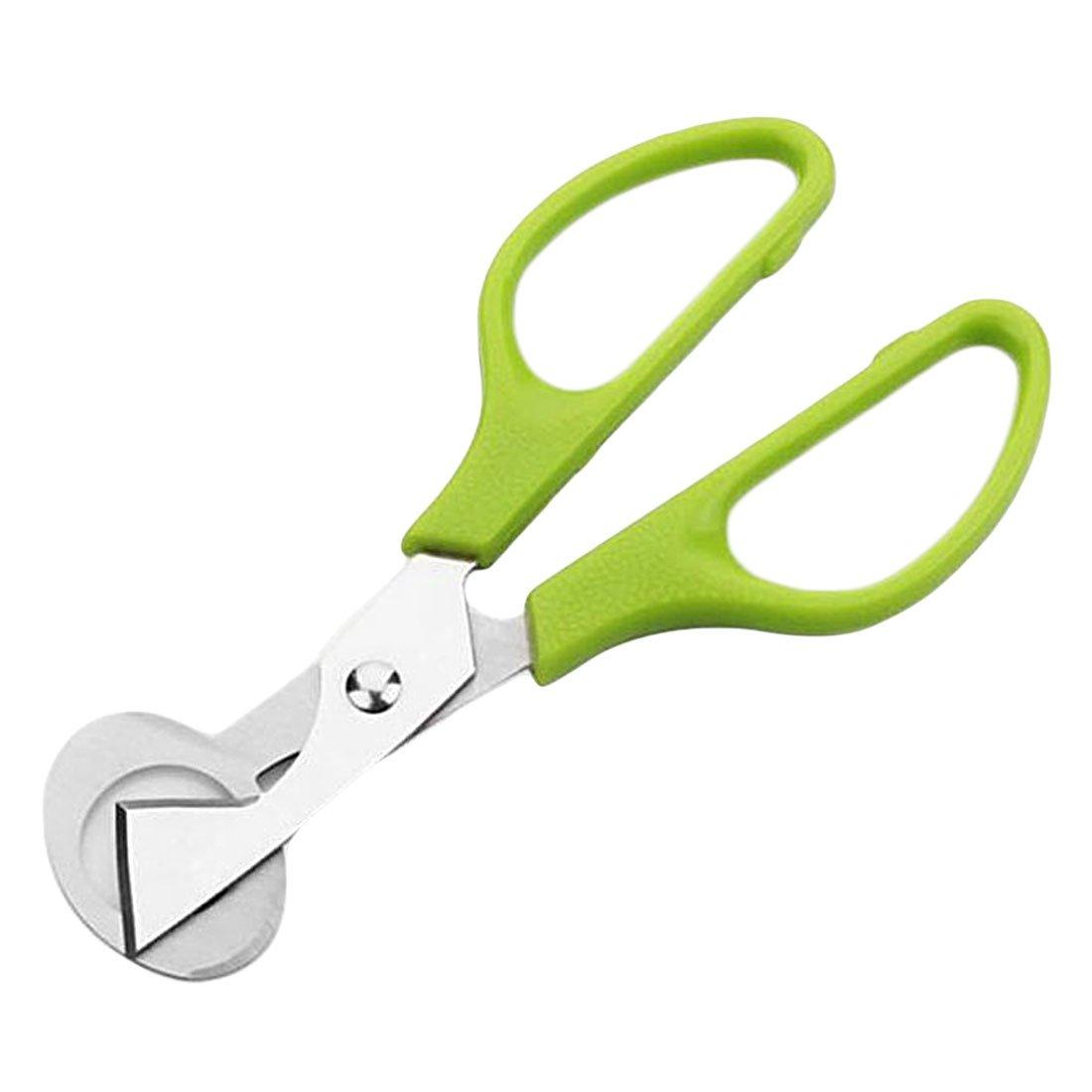 Kitchen Tools Stainless Steel Scissor Shear Cutter Opener for Pigeon Quail Bird Egg - Green