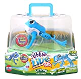 Little Live Pets S1 Lil' Frog Tank