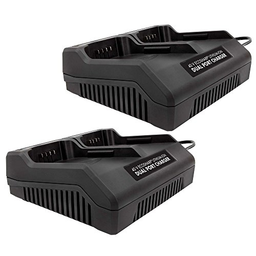 Snow Joe Dual Port iON 40 V EcoSharp Lithium-Ion Charger iCHRG40-DPC (2 Pack) by Snow Joe