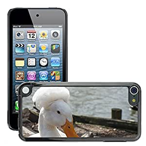 Super Stella Slim PC Hard Case Cover Skin Armor Shell Protection // M00146103 Crested Duck Duck Drake Iroquois // Apple ipod Touch 5 5G 5th