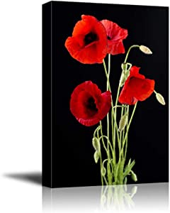Canvas Prints Wall Art - Red Poppy Flowers Against Black Background | Modern Wall Decor/Home Art Stretched Gallery Wraps Giclee Print & Wood Framed. Ready to Hang - 16