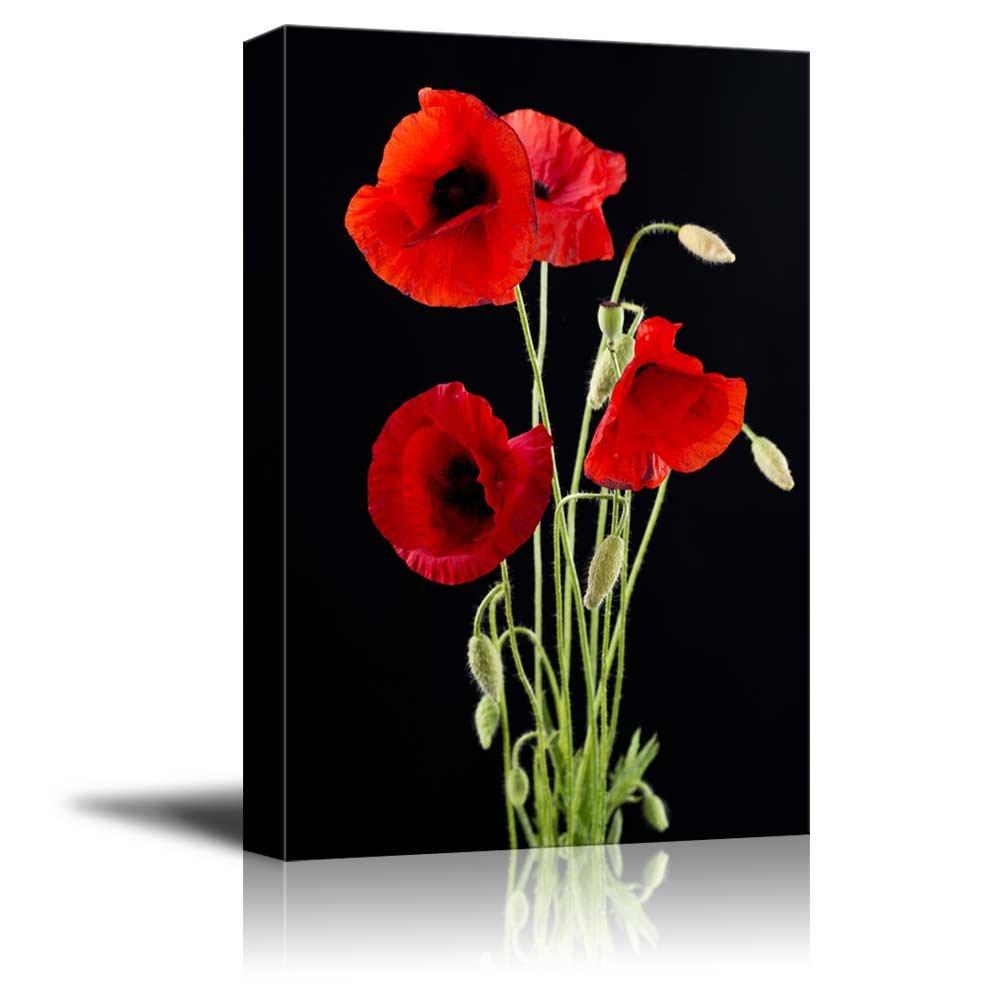 Red Poppy Flowers Against Black Background Wall Decor Wood Framed