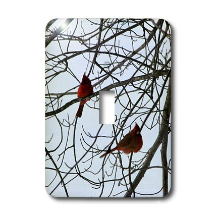 lsp_12355_1 Beverly Turner Photography - Two Cardinals - Light Switch Covers - single toggle switch Cardinals Light Switch Covers