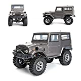 Doatry 1/10 2.4Ghz Electric Exceed RC 4wd off-road RC-4 Climbing Big Cool Cruiser for Game and Match