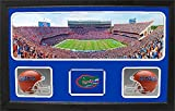 Encore Select 657-04 NCAA Florida Gators Custom Framed Sports Memorabilia with Two Mini Helmets Photograph and Name Plate